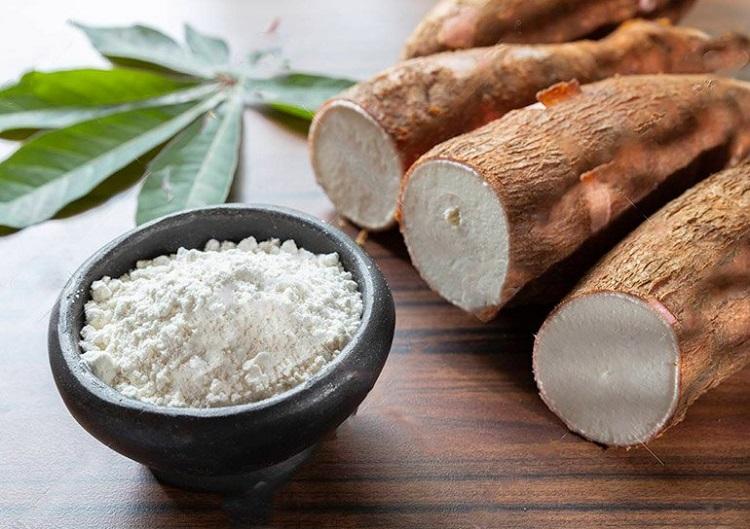 Singkong bahan pembuat tepung tapioka, Sumber : bolakeluarga.com